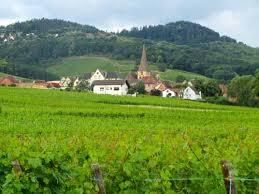 AlsaceWine