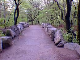 Prospect Park new york